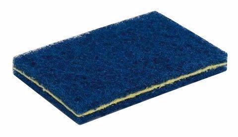 Blå disksvamp