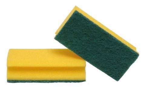 grön disksvamp/skursvamp